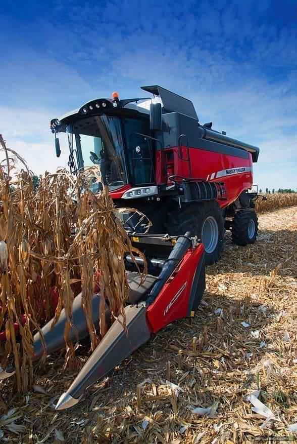 Комбайны Massey Ferguson для кукурузы